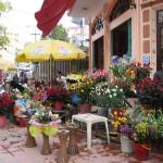 ホンガイの花屋さん、バラの種類が豊富だ
